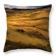 Rolling Hills Throw Pillow by Robert Bales