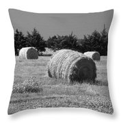 Rolling In The Hay Bw Throw Pillow