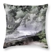 Rolling Waters Throw Pillow
