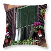 Roma Window Art Throw Pillow
