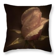 Romance Of A Rose Throw Pillow
