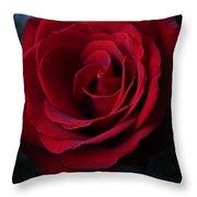 Romancing The Rose  Throw Pillow