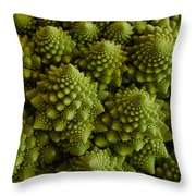 Romanesco Broccoli Close Up Throw Pillow