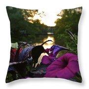 Romantic River View Throw Pillow