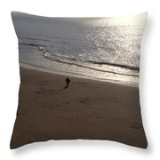 romantic sunset in Holland Throw Pillow