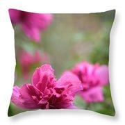 Romantically Pink Throw Pillow