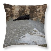 Rome Cat Throw Pillow