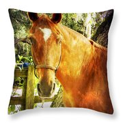 Romeo Throw Pillow
