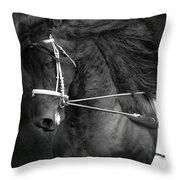 Romke 401 Long Line Throw Pillow