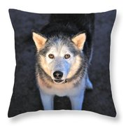 Romy Guardian Of The Grapes Throw Pillow