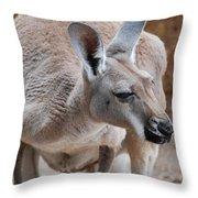 Roo Throw Pillow