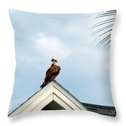 Roof Ornament Throw Pillow