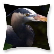 Rookery 3 Throw Pillow