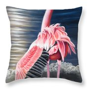 Room With A View Throw Pillow by Phyllis Beiser