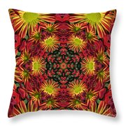 Roomum Throw Pillow
