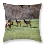 Roosevelt Elk Throw Pillow