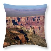 Roosevelt Point Landscape Throw Pillow
