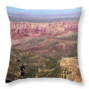 Roosevelt Sweeping View Throw Pillow
