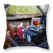 Rooster And Chickens Throw Pillow