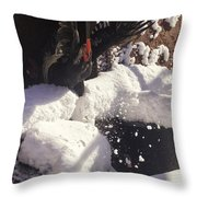 Rooster In Deep Snow Throw Pillow