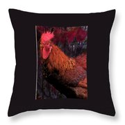 Rooster In October Throw Pillow