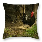 Rooster In The Hen House Throw Pillow