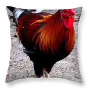 Rooster Ruckus Throw Pillow