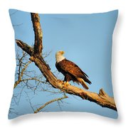 Roosting Tree 1 Throw Pillow