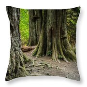 Root Feet Collection 1 Throw Pillow