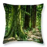Root Feet Collection 3 Throw Pillow