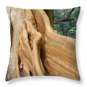 Root Of A Tree Nature Background Throw Pillow