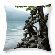 Root Of Beauty Throw Pillow