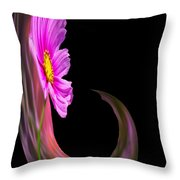 Root Polar View Throw Pillow