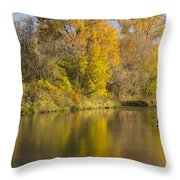 Root River Autumn 1 Throw Pillow