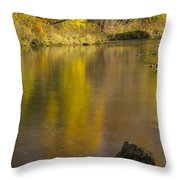 Root River Autumn 2 Throw Pillow