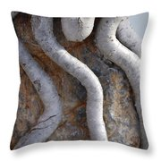 Root Route By Jammer Throw Pillow