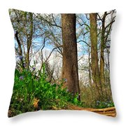 Root Steps Throw Pillow