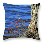 Rooted In Blue  Throw Pillow