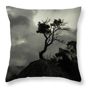 Rooted In Stone Throw Pillow