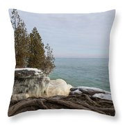 Rooted In Winter Throw Pillow