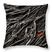 Roots 2 Throw Pillow