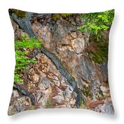 Roots And Rocks Throw Pillow