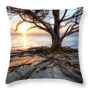 Roots Beach Throw Pillow