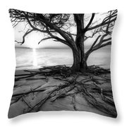 Roots Beach In Black And White Throw Pillow