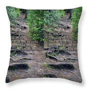 Roots - Cross Your Eyes And Focus On The Middle Image That Appears Throw Pillow