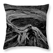 Roots Of A Fallen Tree By Wawa Ontario In Black And White Throw Pillow