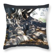 Roots Of Large Fig Tree Throw Pillow