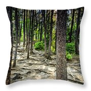 Roots Of Trees Throw Pillow