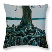 Roots On The Bay Throw Pillow