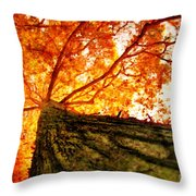 Roots To Branches IIi Throw Pillow